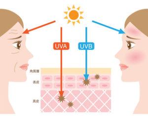 目の日焼けUV対策